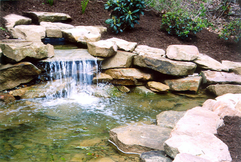 backyard garden pond installation lucas landscaping